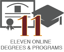 Eleven Online Degree Programs