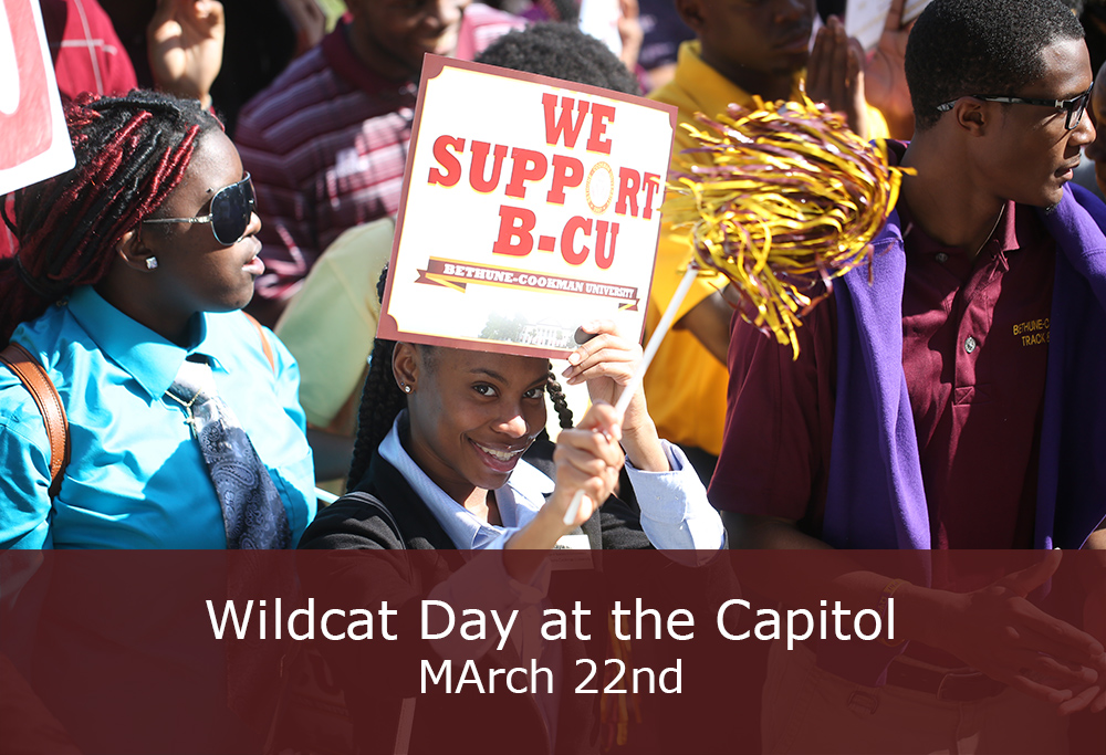Wildcat Day at the Capitol 2017