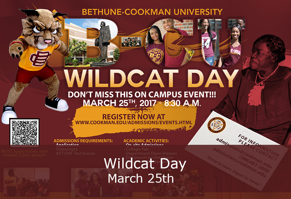 Wildcat Day