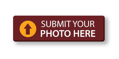 submit photo